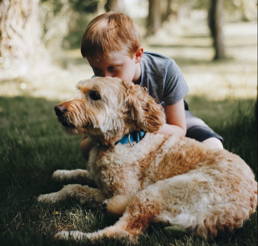 Goldendoodle with Child