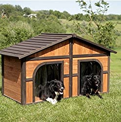 Best Double Dog House (2020) – Dog House for Two Dogs