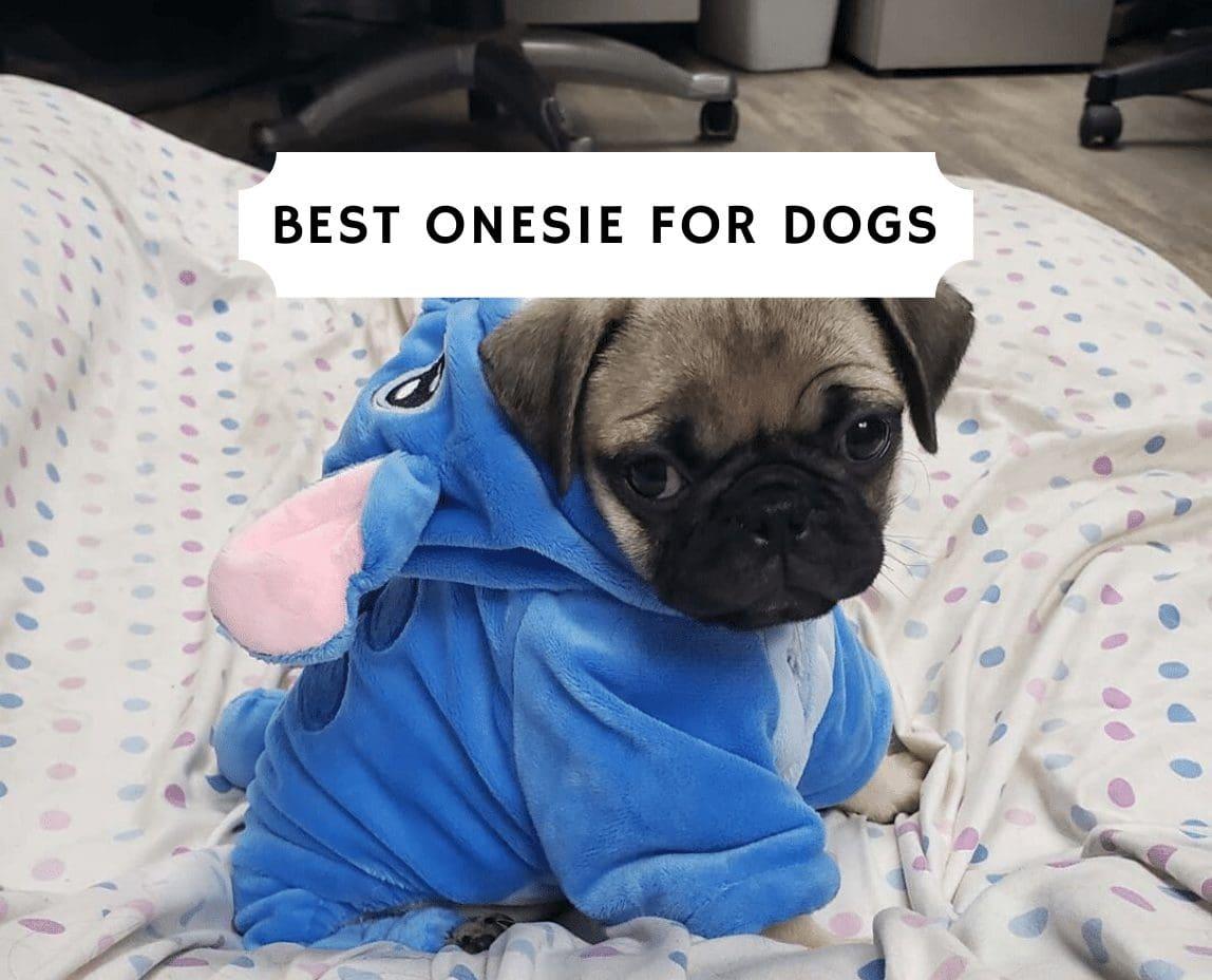 Cute Dog Pajamas Dinosaur Dog Pajamas Comfortable Dog Pajamas Dog T-shirt Stretchy Dog Pajamas Dog Pajamas Cotton Dog Pajamas