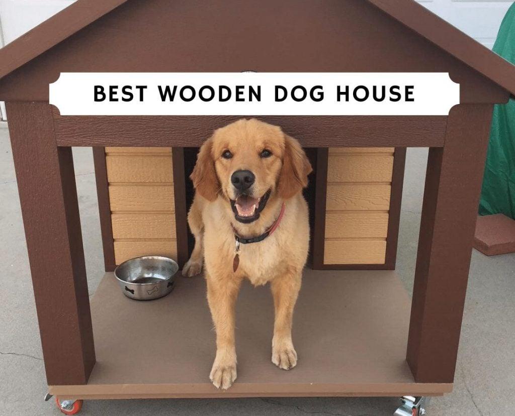 Best wooden dog house