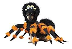 Spider Dog Costume – Black and Orange