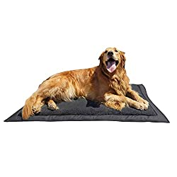 Lightspeed Outdoors Self Inflating Dog Bed
