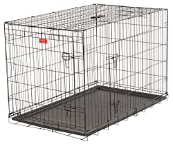 Lucky Dog 2 Door Dog Training Kennel Review