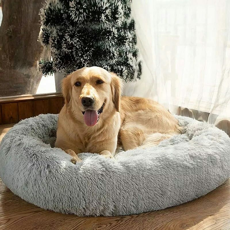 round dog bed with covers