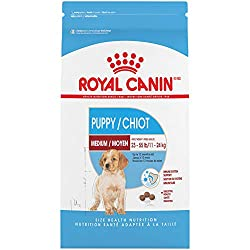 Royal Canin Healthy Dry Puppy Food for Goldendoodles