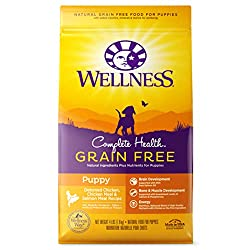 Wellness Complete Health Natural Grain-Free Puppy Food