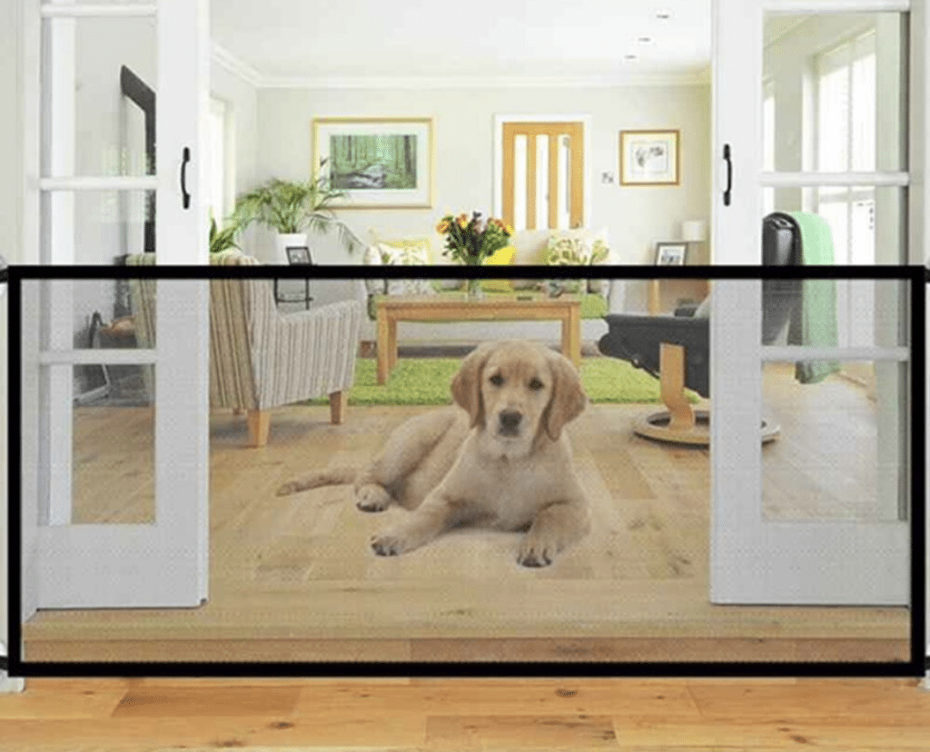 retractable dog gate with golden retriever