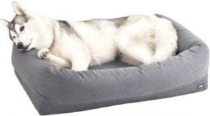 Barkbox Memory Foam Dog Bed for Arthritis