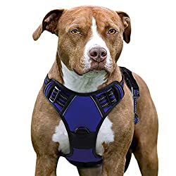 Eagloo Harness Collar for Large Dogs that Pull