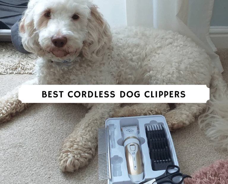 best cordless dog clippers