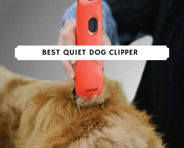best quiet dog clipper