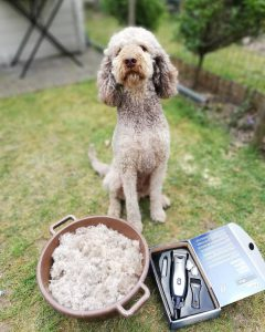 cordless clipper for doodle dog