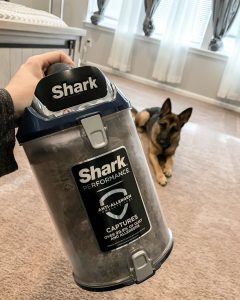 shark vacuum canister full of dog hair