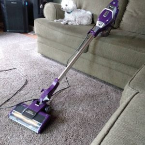 shark vacuum next to a dog after cleaning hair