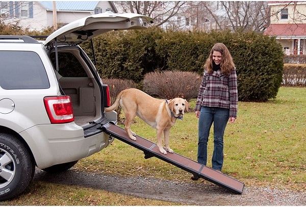 Best-Dog-Ramps-for-SUVs-and-Trucks