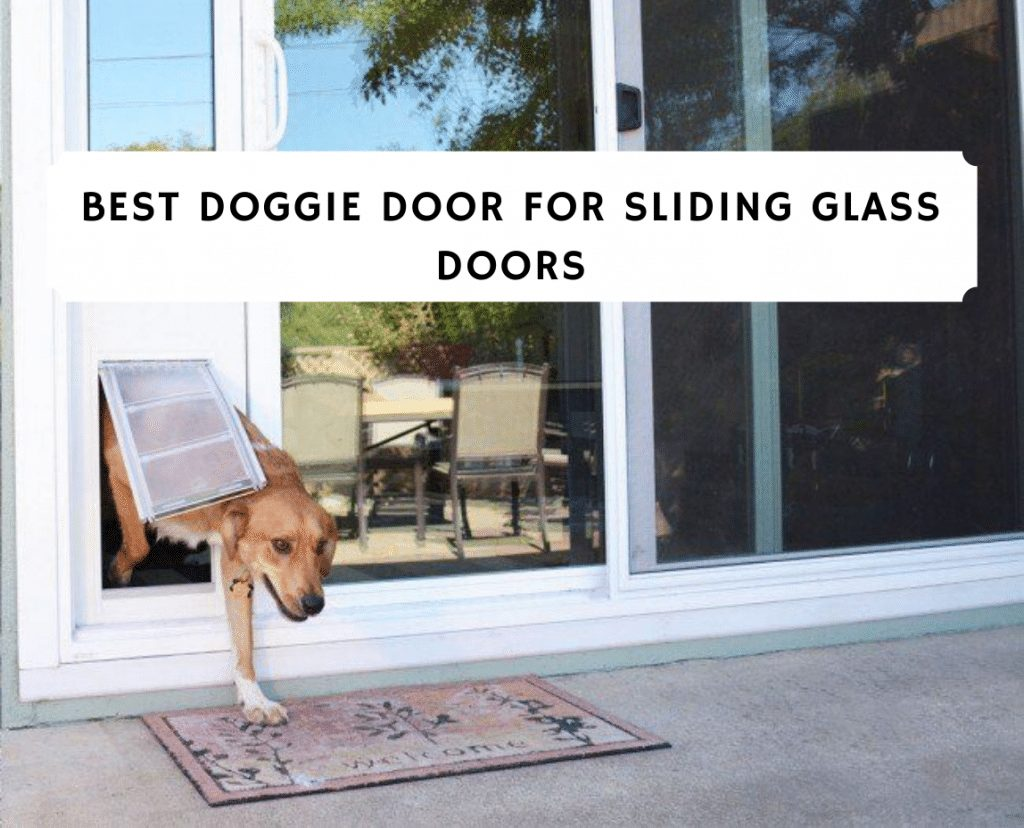 Best Doggie Door for Sliding Glass Doors