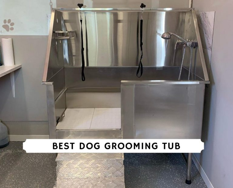 Best dog grooming tub