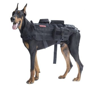 Canine-Weight-Set-Full-Body-Weighted-Dog-Vest​.jpg