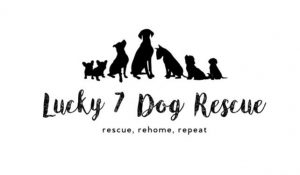 Lucky 7 Dog Rescue