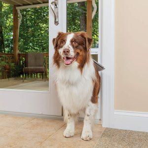 PetSafe Freedom Aluminum Doggie Door for Glass Door