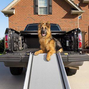 PetSafe Happy Ride Extra Long Telescoping Dog Ramp