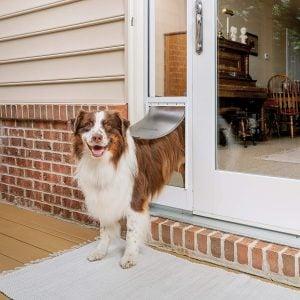 PetSafe Sliding Glass Door Insert for Dogs