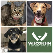 The Wisconsin Human Society
