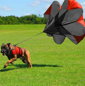 Xdog Dog Parachute Attachment, Resistance Chute for Speed, Acceleration & Exercise Training