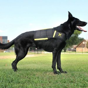 Xdog-Weight-Fitness-Vest-for-Dogs​.jpga