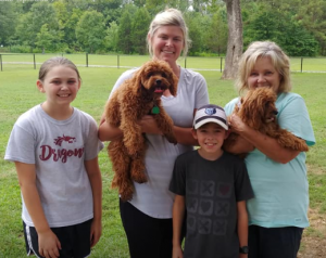 cavapoo with family