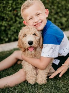 Cox Family Goldendoodles