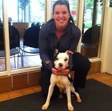 Dog Rescue Chicago