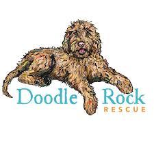Doodle Rock Rescue
