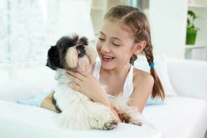 Shih Poo with Family