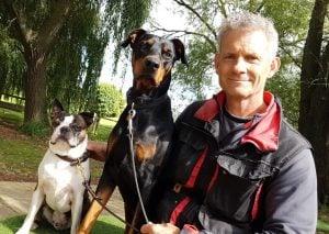 An e-collar cruel for dogs
