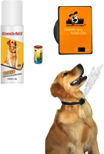Downtown Pet Supply No Bark Citronella Collar