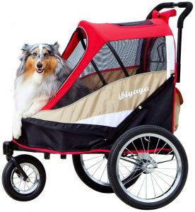 Double Dog Hiking Stroller
