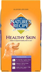 Nature's Recipe Healthy Skin Vegetarian Dog Food