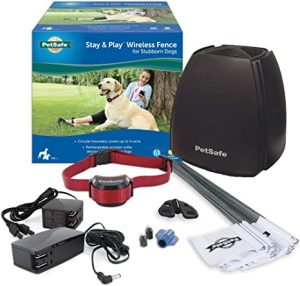 Pet Safe Stay & Play Wireless Fence for Stubborn Dogs​