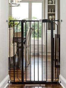 dog gates for big dogs
