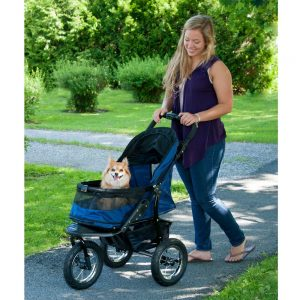 Safety Features for a Dog Hiking Stroller