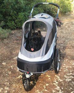 large dog stroller for hiking