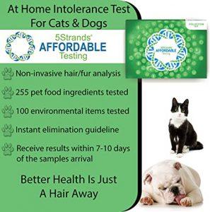 5Strands Pet Standard Package - Test 255 Food Ingredients & 100 Environmental Items $144.00