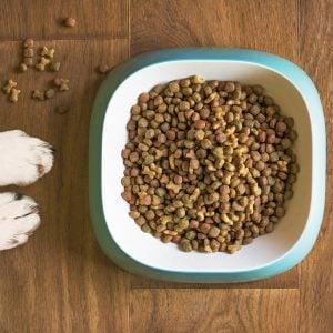 dog food with vitamins