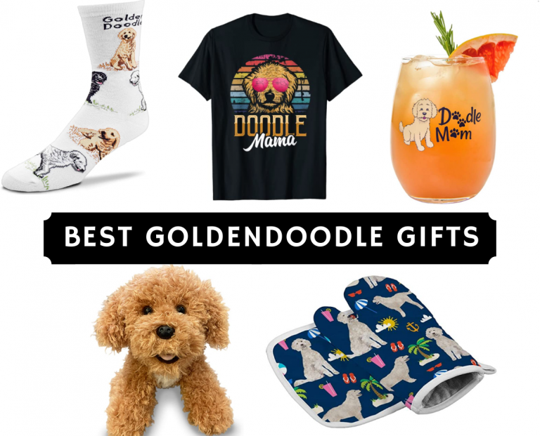 Best Goldendoodle Gifts