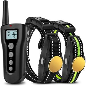 Bousnic Waterproof Training Collar with Remote