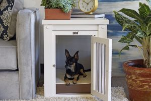 New Age Pet EcoFlex Puppy Crate and End Table