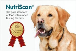 Nutriscan at-Home Pet Food Intolerance and Sensitivity Test for Dogs $298