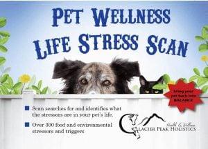 Glacier Pet Holistics Pet Wellness Life Stress Scan $107.95