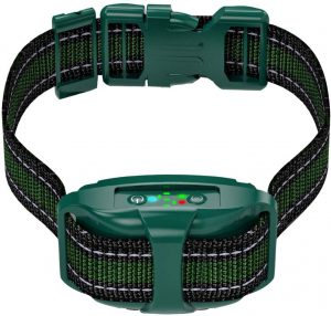 TBI Professional Bark Collar with Dual Vibration